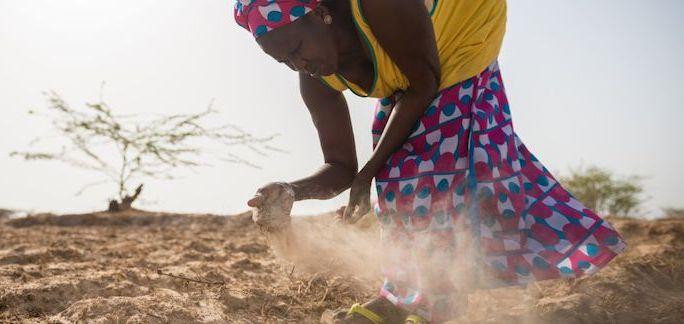 Obiettivi di sviluppo sostenibile: clima