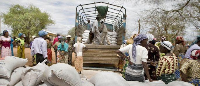 carestia classificazione
